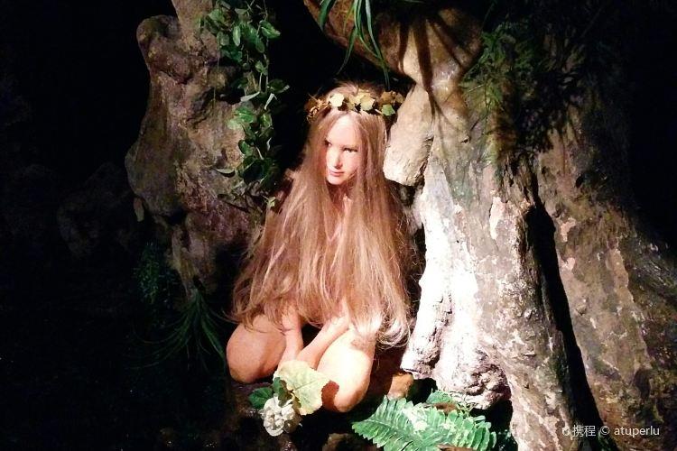 El Bosc De Les Fades1