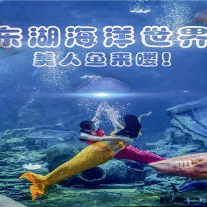 武汉东湖海洋世界旅游景点攻略图