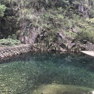 大奇山国家森林公园旅游景点攻略图