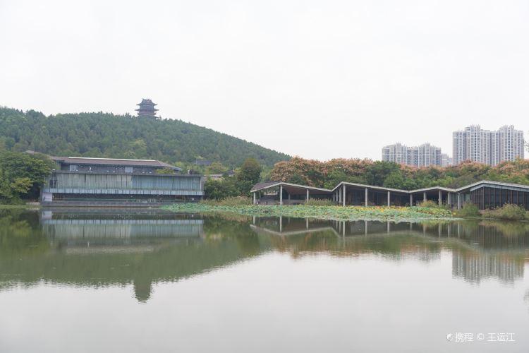 Xuzhou Han Culture Scenic Spot3