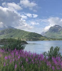 [赫尔辛基游记图片] 夏季去北欧四国避暑行(含罗弗敦群岛和挪威自驾十五天)
