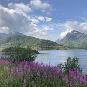 卑尔根游记图文-夏季去北欧四国避暑行(含罗弗敦群岛和挪威自驾十五天)