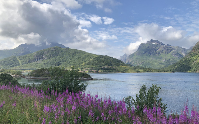 夏季去北欧四国避暑行(含罗弗敦群岛和挪威自驾十五天)