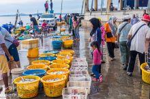沙巴的鱼市如海底世界,珍贵的鱼类可以随便吃,却不能比OK的手势