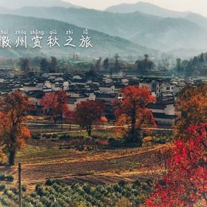 黟县游记图文-这个深秋,我在徽州古村落一路追逐最美秋天!