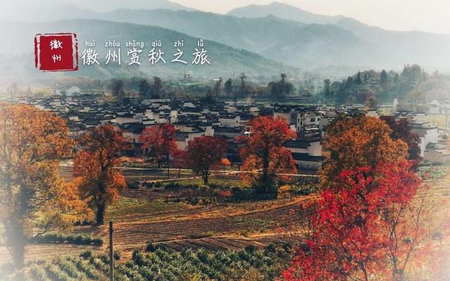 这个深秋,我在徽州古村落一路追逐最美秋天!