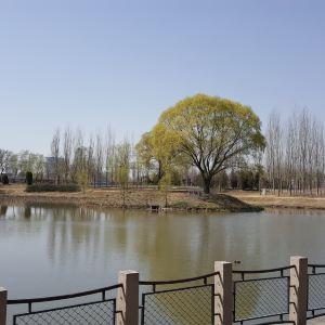 将府公园旅游景点攻略图