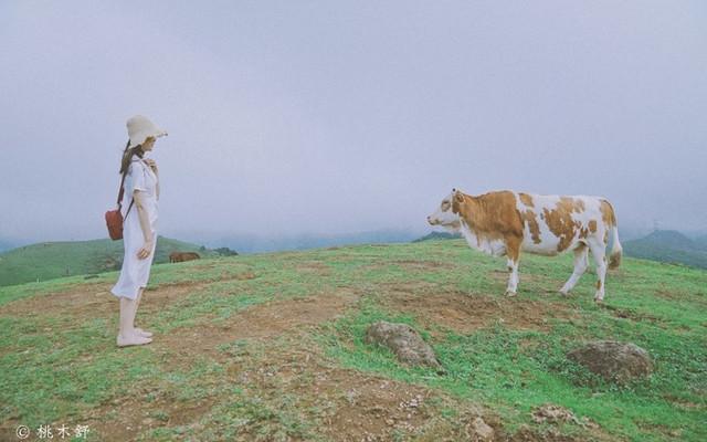 郴州|念念不忘,遠方的云雾与丹霞