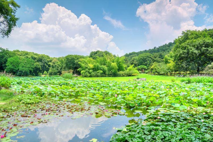 東湖磨山景區4