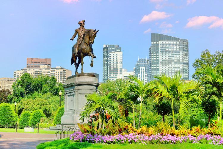 波士頓公共花園
