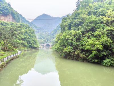 香榧森林公園