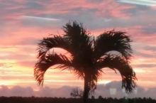 汤加游第十四天:努库阿洛法~奥克兰