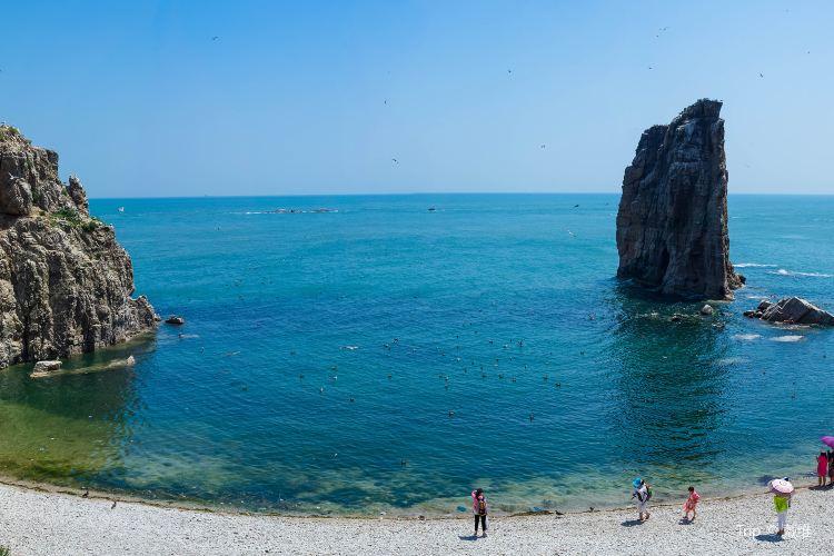 Sea Donkey Island1