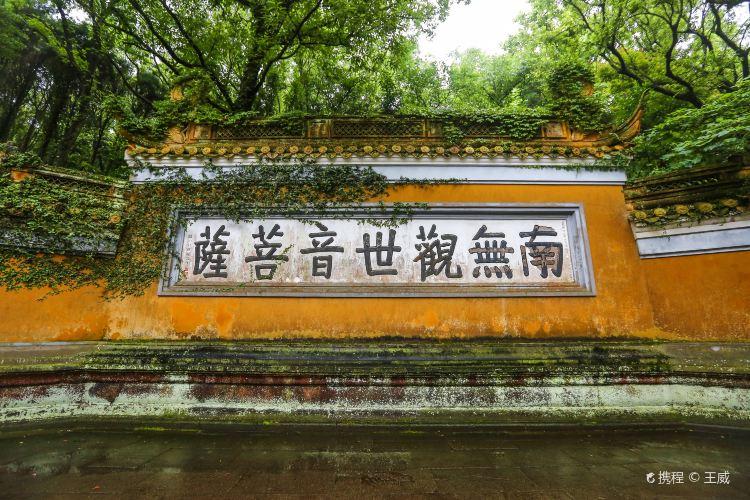 普濟禪寺3