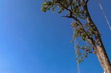 【肉球滚世界】KA KUN KA~~泰清新之蜜月小火车遨游曼谷清迈拜县之行