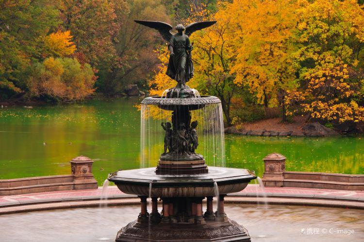 Bethesda Fountain2