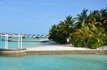 马尔代夫中央格兰德岛游记