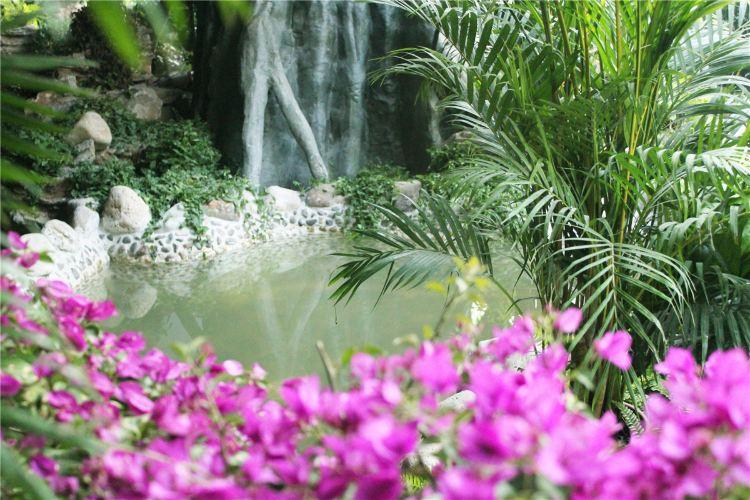 Aerkadiya Hot Springs Hotel1