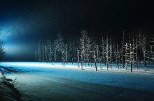 巧妙的构思、对美的执念——论青池夜景的设计