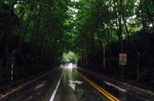 中山陵,整整三天的大雨~