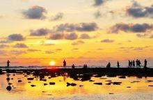 北海涠洲岛火了!干净的大海、温润的气候,如世外桃源一般!