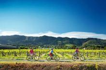 除了绝美风光,世界顶尖的葡萄酒这里都有!