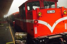 阿里山小火车赏樱