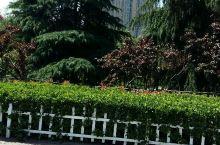 西峡世纪广场