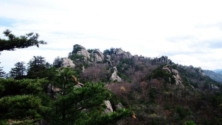 Tongtianhe National Forest Park (South Gate)4