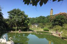 10月6日清新游宝塔园