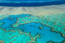 大堡礁的珊瑚正在白化,再不去就看不到啦,快点走进大堡礁,来场视觉盛宴!