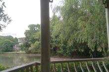 茂名春苑公园,景色宜人,空气清新,适合在那里拍照。