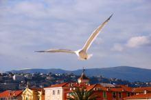 地中海畔的尼斯城