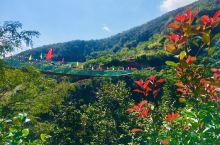 传奇山庄:位于浙江省舟山市定海区白泉的传奇庄园,山清水秀,风光旖旎,见证了绿水青山就是金山银山!