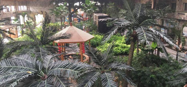 錦泰溫泉度假酒店生態餐廳2