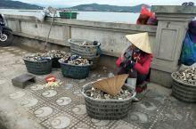游下龙湾海上桂林全是外国人,下龙湾这地方赚全世界人的钱。