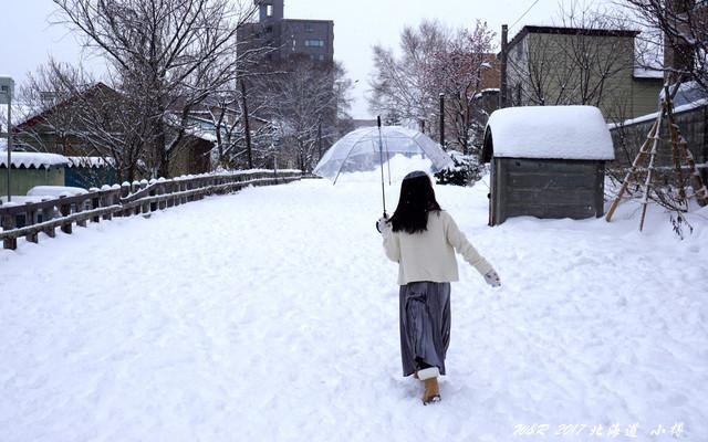 2017年冬天,去北海道看雪!泡温泉!  札幌~小樽~星野~登别~洞爷湖