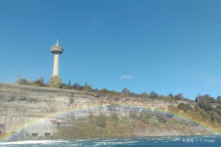 Skylon Tower4