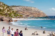 招募南澳旅行体验师!黄晓明喊你来免费体验9天7晚澳式风情之旅!