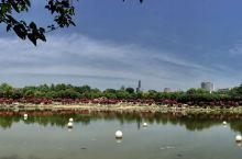 平顶山市新城区白龟山水库一年四季皆可玩 适合遛孩子的好地方 这几张是生态园的,不想另起贴了,先放这吧