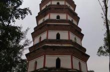 桂平市东塔一游。