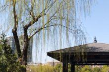 湘潭白石公园的春天