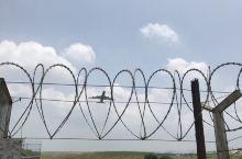 台湾游-隔着铁丝网看桃园机场飞机起飞🛫️