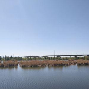 伊宁城市海景公园旅游景点攻略图