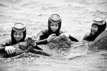 """她们被称为""""地球上最后的美人鱼"""",20年后即将消失!"""