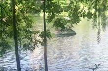 仙居的湿地河畔
