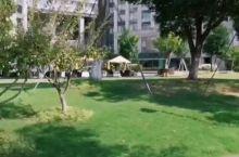 阳澄湖费尔蒙酒店后花园