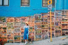 香港网红墙   中环咸嘉街