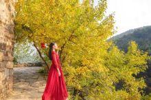 山西最美的秋色,就在这个千年古村