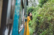 斯里兰卡|茶园列车,高山里的绿野仙踪